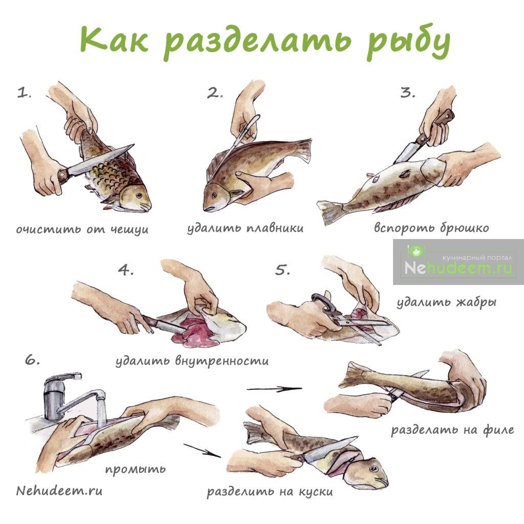 Как правильно разделать рыбу на филе фото пошагово